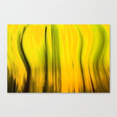 Abstracts Of Abstract Canvas Print