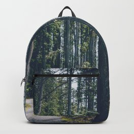Glacier Path Backpack