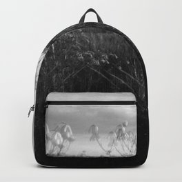 variation on a theme Backpack