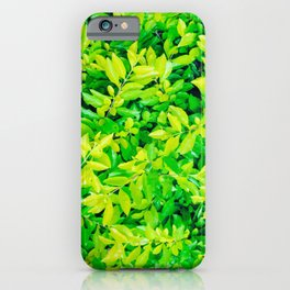 hojas verdes iPhone Case