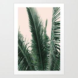 Maui Sunset Palm Leaves Tropicana Art Print