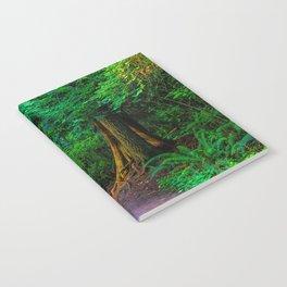 Magic Moment Notebook