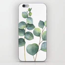 Watercolor eucalyptus branches iPhone Skin