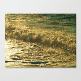 Leaping Falling Rushing #2 Canvas Print