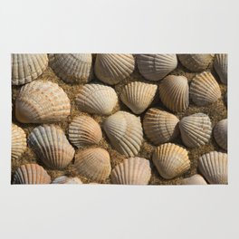 The World of Shells Rug