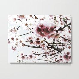 Sakura X Metal Print