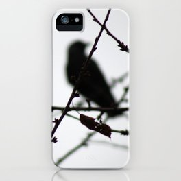 Autumn birds iPhone Case