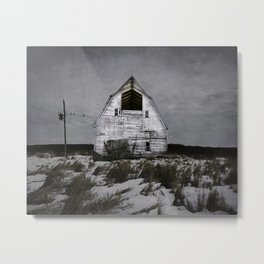 Winters come and winters go. Metal Print