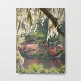 Southern Wonderland 1 Metal Print