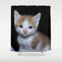 Adorable Baby orange and white tabby kitten Shower Curtain