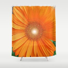 The Orange Gerber Daisy Flower Shower Curtain