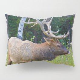 Bull Elk shows off his rack in Jasper National Park Pillow Sham