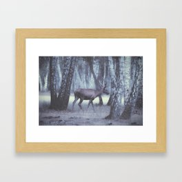 Rambouillet Forest I Framed Art Print