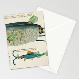 Vintage Illustration of decorated wash basins published in 1884 by JL Mott Iron Works Stationery Cards