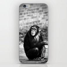 Ape or Trait? iPhone & iPod Skin