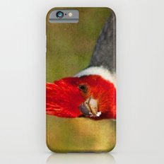 Red-crested Cardinal iPhone 6s Slim Case