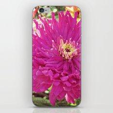 Garden Life 1 iPhone Skin