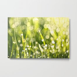 One Summer Morning Metal Print