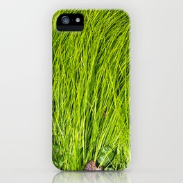 Verdure iPhone Case