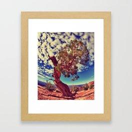 """""""Finding Sky"""" Framed Art Print"""