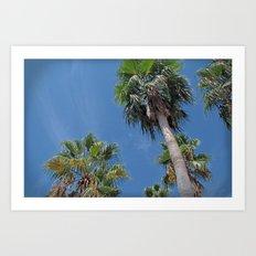 Tropicalia Art Print