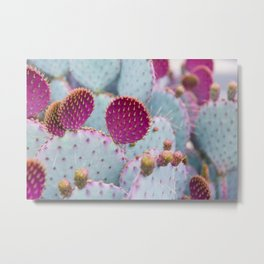 Santa Rita Prickly Pear I Metal Print