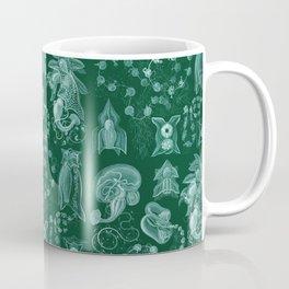 Ernst Haeckel - Siphonophorae Coffee Mug