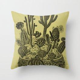 Antiquarian Succulents Throw Pillow