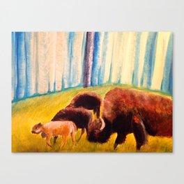 Bison Exodus Canvas Print
