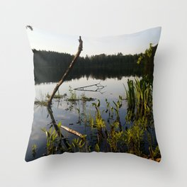Majestic Waters Throw Pillow