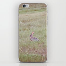 Farm Wabbit 2 iPhone Skin