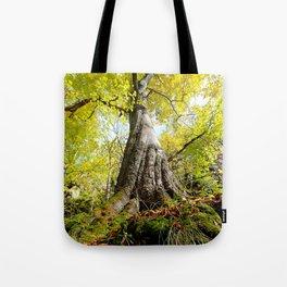 Old guardian tree Tote Bag