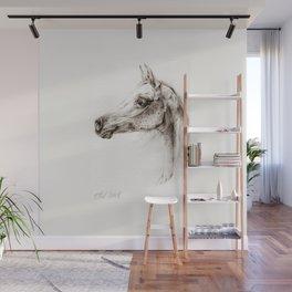 Arabian horse head pencil drawing Wall Mural