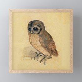 Albrecht Durer The Little Owl Framed Mini Art Print