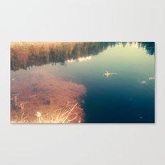 lakefrog#1 Canvas Print