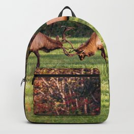Elk Sparring Great Smoky Mountains Backpack