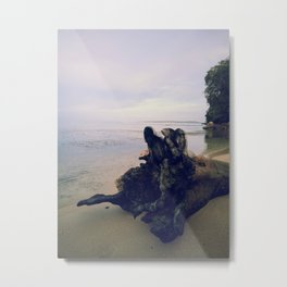 ocean log Metal Print