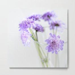 Flores silvestres lilas Metal Print