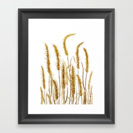 golden wheat field watercolor Framed Art Print