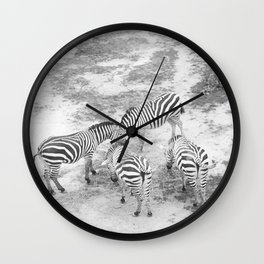 But Where Are the Zebras? Wall Clock