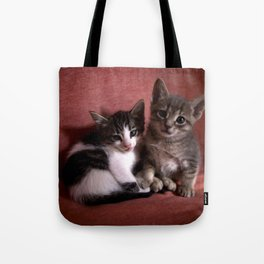Brother kittens Tote Bag