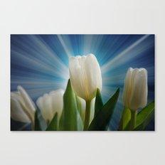 Tulpen Traum Canvas Print