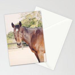 Kind Gulliver Stationery Cards