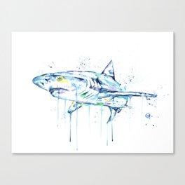 Shark - Toothy Canvas Print