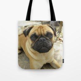 Grover - Pug Tote Bag