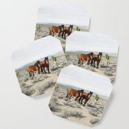 Desert Horse Pair Coaster