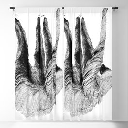 Two-toed Sloth Blackout Curtain