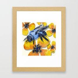 Carpenter Bee Blooms Framed Art Print