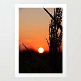 Through to the Setting Sun Art Print