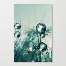 One Seed with Blue Drops Canvas Print
